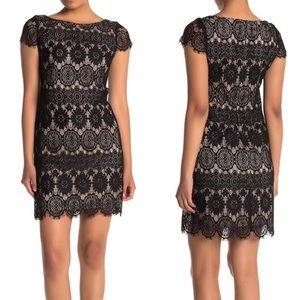 NWT Eliza J Black Lace Shift Dress Size 10